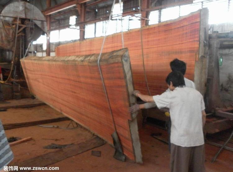 红豆杉价格 红豆杉木材价格 红豆杉树市场价格