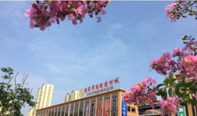 张家界市第四届家装博览会将在国际建材城盛大启幕