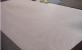 杨桉木混合多层板 奥古曼冰糖果贴面三合板多层板胶合板
